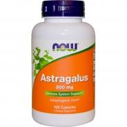 Astragalus, 500 mg, 100 Kapseln