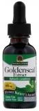 Natures Answer, Gelbwurzel, Alkoholfrei, 500 mg, (30 ml)