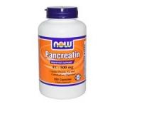 Pancreatin 10x - 250 Kapseln